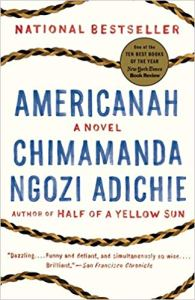 americanah-come-and-go-literary